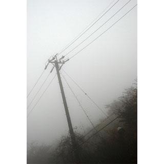 ポストカード【霧の中の電柱】*b