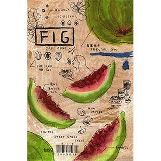 ポストカード【FIG (いちじく)】*ETSU