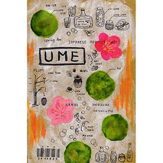 ポストカード【UME (うめ)】*ETSU