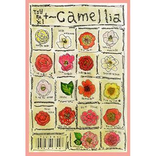 ポストカード【Camellia】* ETSU