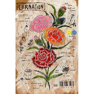 ポストカード【CARNATION】*ETSU