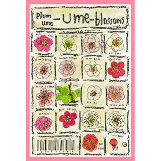 ポストカード【Ume-blossoms】* ETSU