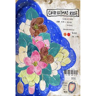 ポストカード【クリスマスローズ】* ETSU