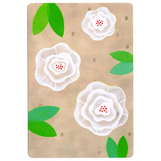 ポストカード【white flower (白い花)】*きむらともこ