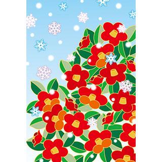 ポストカード【雪つばき】*くま舎