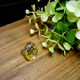 古い洋書と花の指輪 *Luna Antique*