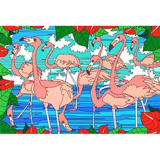 ポストカード【flamingo】* seri
