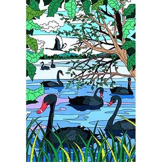 ポストカード【Black Swan】* seri