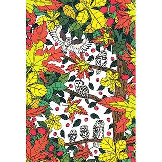 ポストカード【Owl】* seri