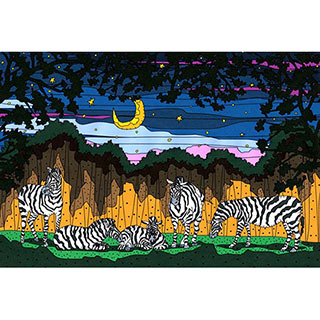 ポストカード【Zebra night】* seri