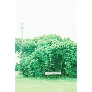 Bench.*Time of the picture